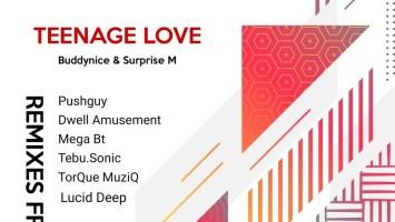 Buddynice & Surprise M - Teenage Love (Remixes)