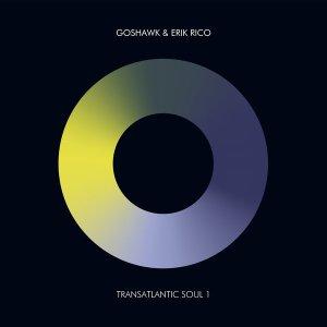 Erik Rico & Goshawk - Transatlantic Soul 1