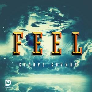 Groove Govnor - Feel (Original Mix)