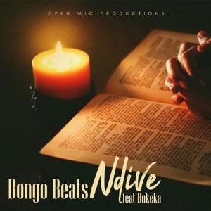 Bongo Beats - Ndive (feat. Bukeka)