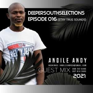 AndileAndy - DSS Episode 016 (Guest Mix)