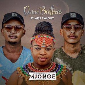 Dvine Brothers & Miss Twaggy - Mjonge