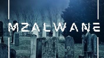 Comado - Mzalwane (feat. Mthandazo Gatya, DJ MANZO SA & Aflat)