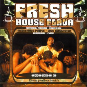 DJ Fresh - Fresh House Flava, Vol. 1 (Album 1998)