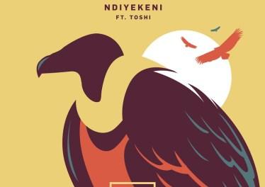 Siphe Tebeka, Toshi - Ndiyekeni (Edit)
