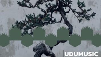 Udumusic - Ame Nimo Makezu (Mpeshnyk Remix)