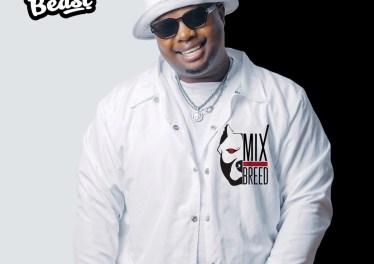 Beast - eDubane (feat. Reece Madlisa, Zuma & Busta 929)