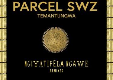 Parcel (SWZ), Temantungwa - Ngiyatifela Ngawe (Remixes)