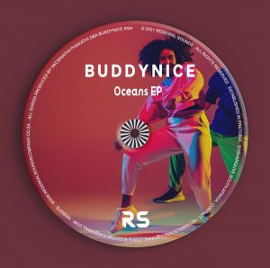 Buddynice - Idlozi Lam' (Redemial Mix)