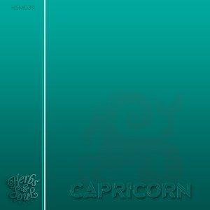 SoulPoizen - Capricorn (Original Mix)