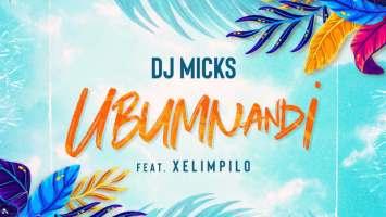 DJ Micks - Ubumnandi (feat. Xelimpilo)