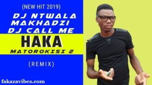 DOWNLOAD Haka Matorokisi Part 2 – Dj ntwala & Dj Call Me ft Makhadzi (Remix) MP3 SONG