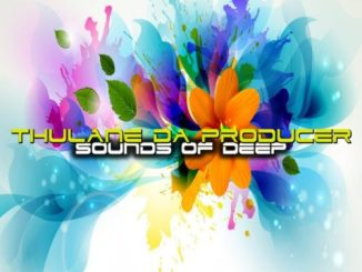 DOWNLOAD Thulane Da Producer Sounds Of Deep EP ZipMP3 SONG DOWNLOAD