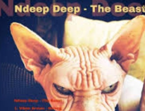 DOWNLOAD Ndeep Deep Tribute To Duke Soul Mp3 song download