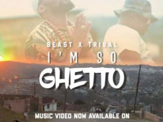 Beast – I'm So Ghetto ft. Tribal mp3 music download