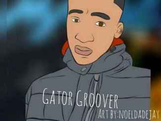 Gator Groover – Section 45 mp3 music download