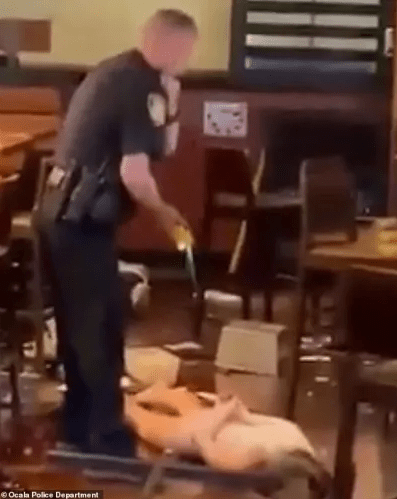 Police Tasered Naked Woman Trashing A Restaurant in Her Boobs