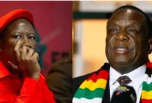 Shut up your uncircumcised mouth: Zimbabwe government warns Julius Malema