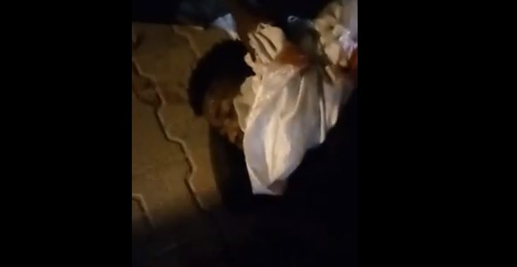 Tunisie: Un ivoirien poignardé dans le quartier de Bhar Lazreg (vidéo)