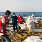 Les corps de 17 migrants à destination de l'Europe s'échouent en Libye (photos)
