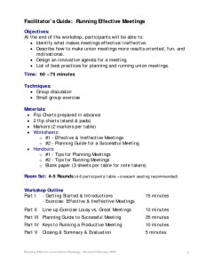 thumbnail of facilitatorsguide-meetings-2009