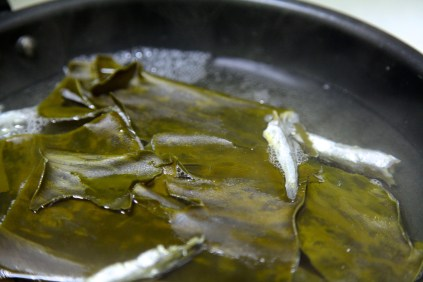 anchovies and kelp