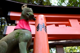 guardian foxes.