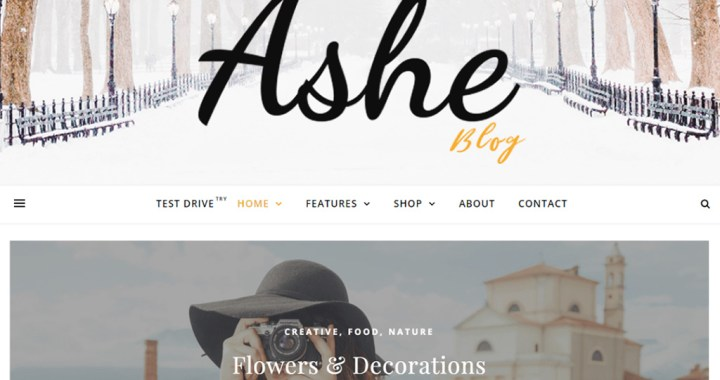 Ashe---Personal-and-Multi-Author-Free-WordPress-Blog-Theme
