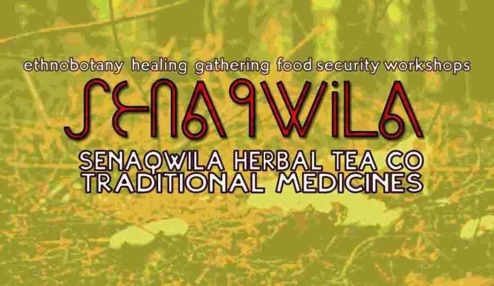 CeaseCard Senaqwila Herbal Tea Co