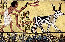 Egyptian Plowman Mural