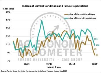 Figure 2. Indices of Current Conditions and Future Expectations, October 2015-May 2019.