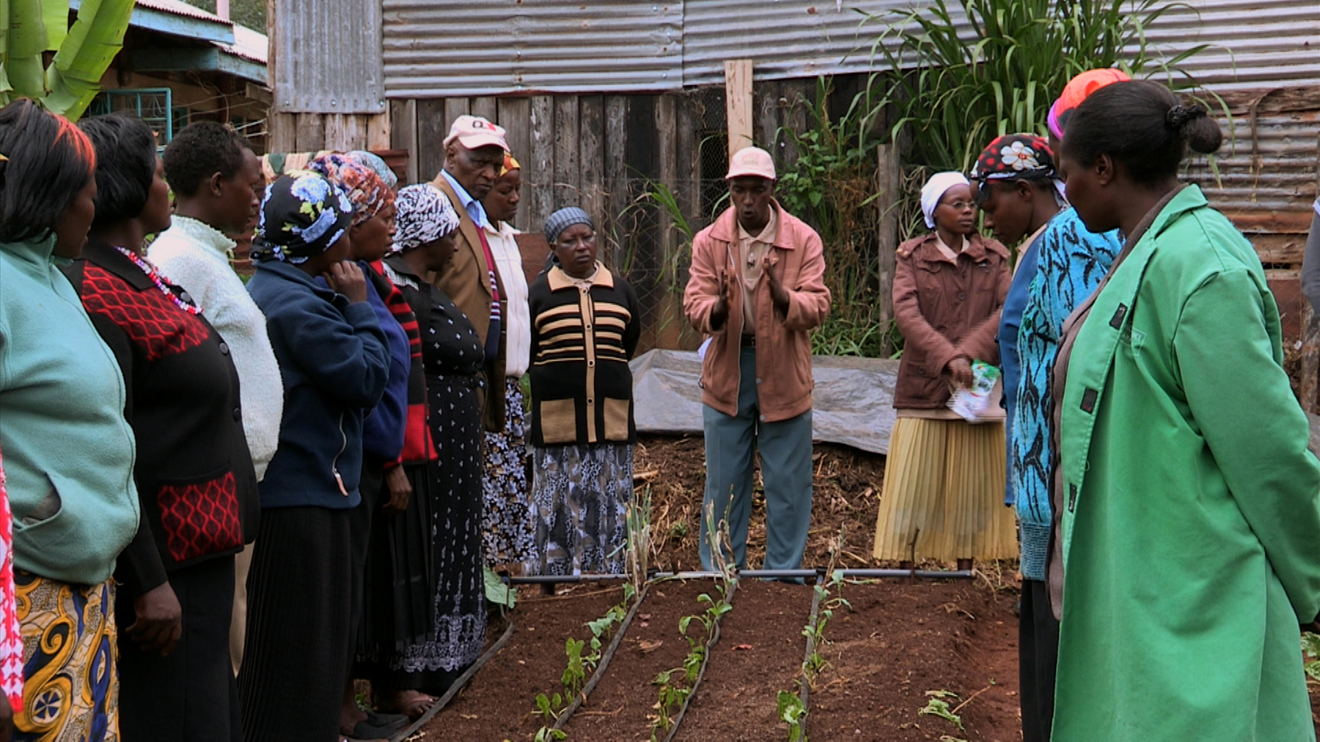 Agriculture For Impact Agricultural Education And Training