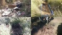 بالصور:أسرار غريبة و انحرافات خطيرة تكشف عنها عملية شذب وتقليم الأشجار بأكادير