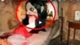 مرعب: وحوش سجلتهم الكاميرا في الحياة الواقعية