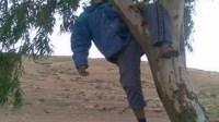 العثور على جثة رجل معلقة بشجرة بالمدار السياحي والأمن يحقق