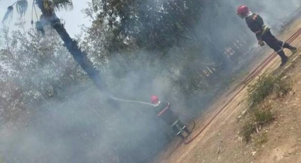 عااجل بالصور والفيديو:حريق يأتي على المستنبت البلدي بأكادير يخلف خسائر كبيرة