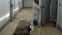تصوير فيديو صادم لجثت الموتى من داخل مستودع الأموات بالمستشفى يثير ضجة كبيرة ويشعل مواقع التواصل الاجتماعي والأمن يحقق في القضية