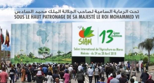 جهة سوس ماسة توقع على مشاركة وازنة في المعرض الدولي للفلاحة في نسخته الثالثة عشرة.