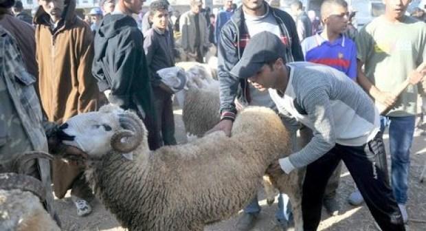 سار للموظفين المغاربة:عطلة أسبوع كامل، و هذا موعد عيد الأضحى ودفع الأجور