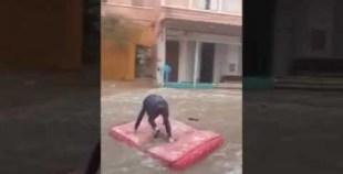 مضحك: ركوب الامواج في الشوارع خلال الفيضانات الأخيرة