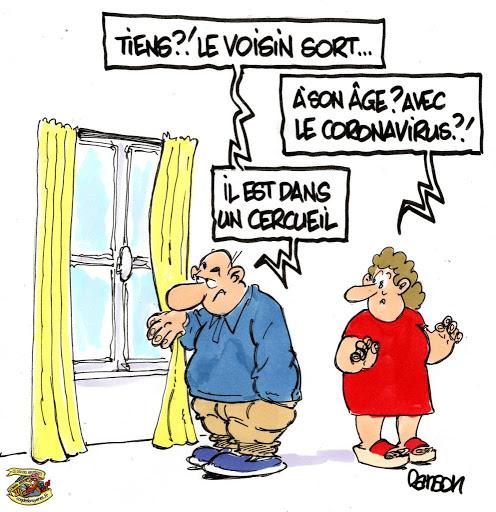 Dicton Du Jour Humour Chat Humour Humour Drole