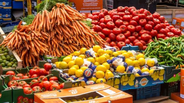 أكادير : لقاء دراسي لمنتجي ومصدري الخضر والفواكه (أبيفيل)