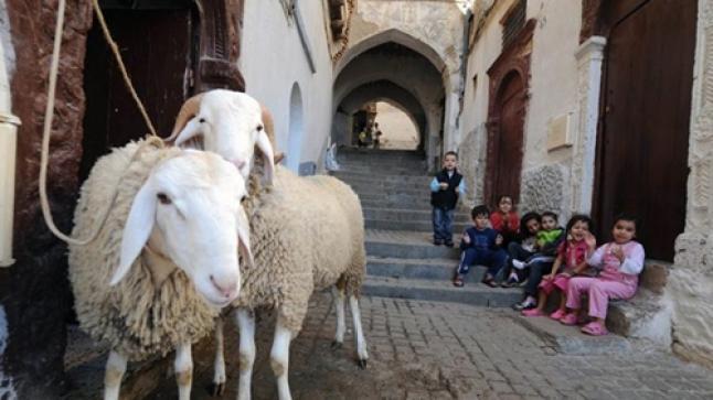 وزارة الأوقاف تعلن عن يوم عيد الأضحى بالمغرب