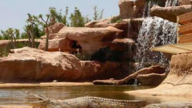 حديقة التماسيح بأكادير تطلق مبادرة لترشيد استعمال مياه السقي