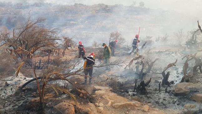 """السلطات تعلن عن السيطرة على حريق واحة """"تاركا"""" باشتوكة أيت باها"""