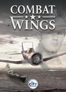 Combat Wings PC