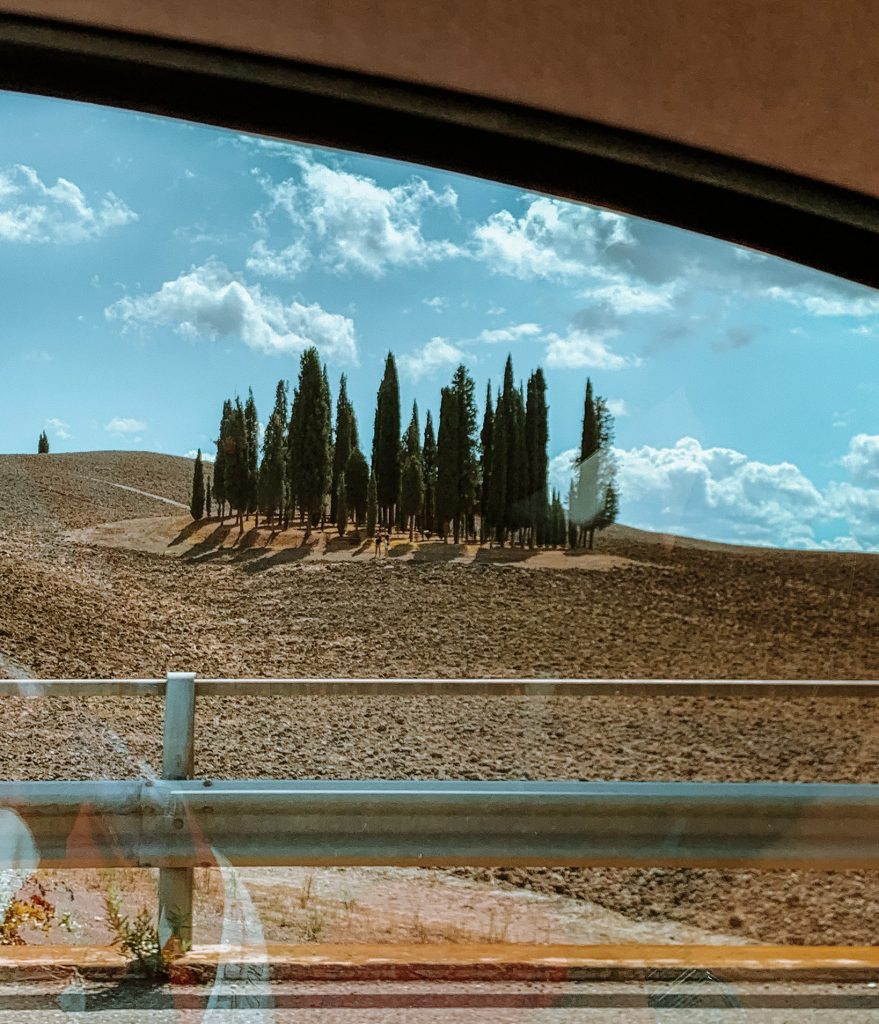 Famous cypress trees in Tuscany