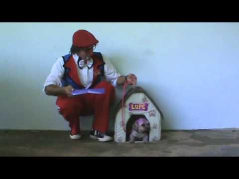 El Payaso Che-Ché y la perrita Lupe dentro de su casita
