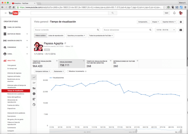 Payasa Agapita Analytics 2016 January