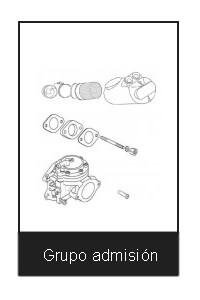 motor kart grupo de admision
